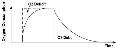 oxygen debt graph chart